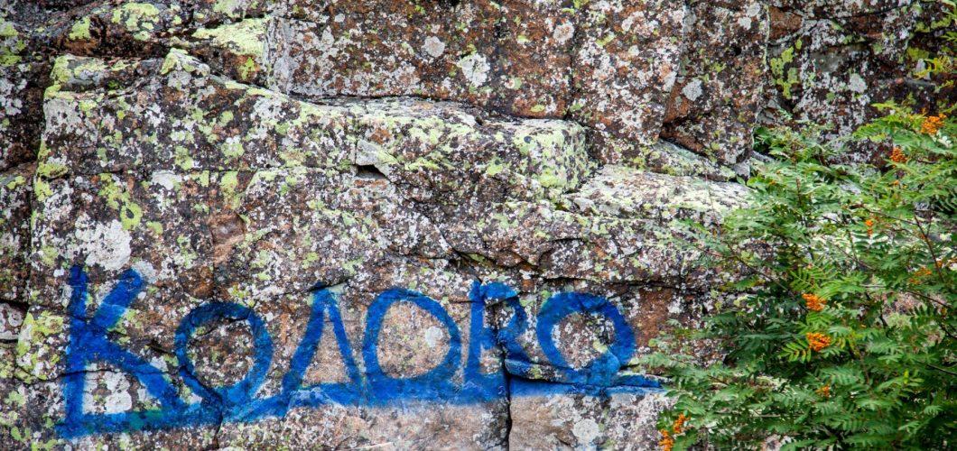 akorgo-1900px-_MG_1231